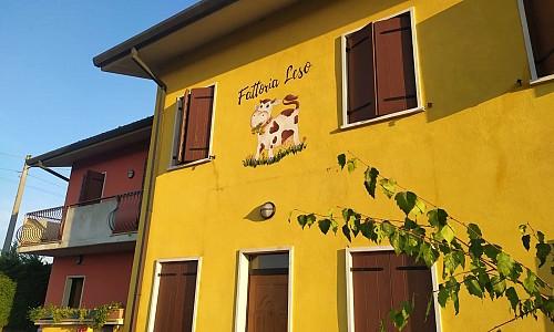 Fattoria Leso - Cà di David (Verona)