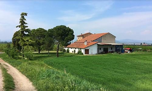 Agriturismo La Zerpa - Belfiore (Verona)