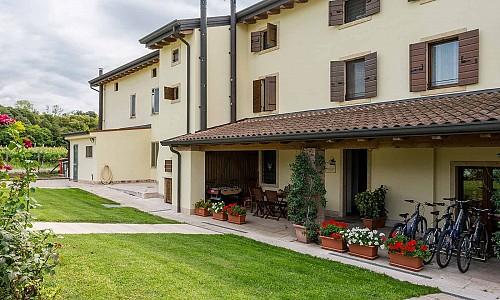 Agriturismo Al Tralcio - Valeggio sul Mincio (Verona)