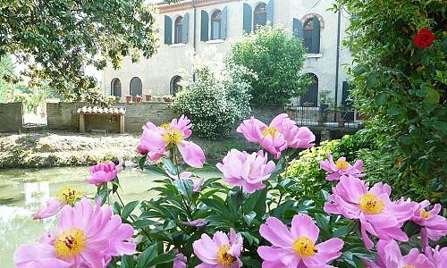 Agriturismo Corte Cesòn - Gazzo Veronese (Verona)