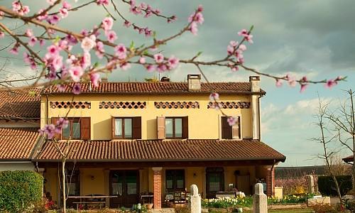 Agriturismo Fior di Maggio - Pescantina (Verona)