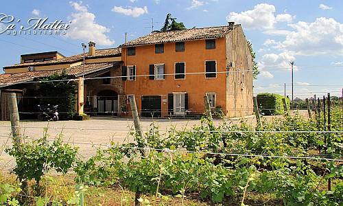 Agriturismo Ca' Mattei - Pescantina (Verona)