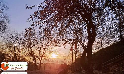 Fattoria Sociale Terre di Sprea - Badia Calavena (Verona)